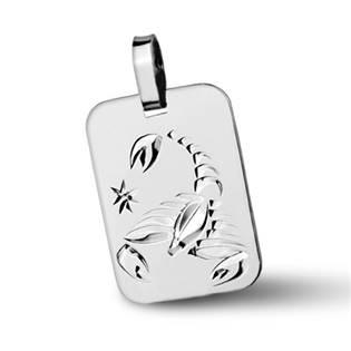 ZB511430-11 Stříbrný přívěšek znamení ŠTÍR