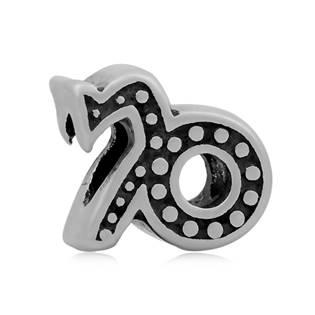 Navlékací ocelový přívěšek korálek - znamení kozoroh