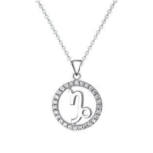 NB-2162-05 Stříbrný náhrdelník - znamení kozoroh